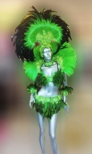 C027NN Carnival Brazilian Rio Carnival Samba Dance Bra Belt Headdress Dress Costume set